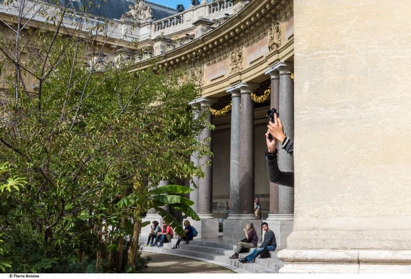 Petit-Palais_Jardin